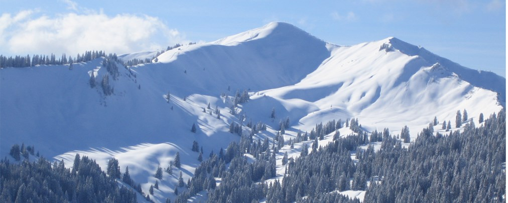 DAV: Nein zur geplanten Skischaukel am Riedberger Horn