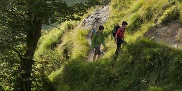 Tourentipp, Wandertour, Wandertipp, Benediktenwand, Bayerische Voralpen, Jachenau