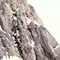 """Young Spider"", Eiger Nordwand 2001"
