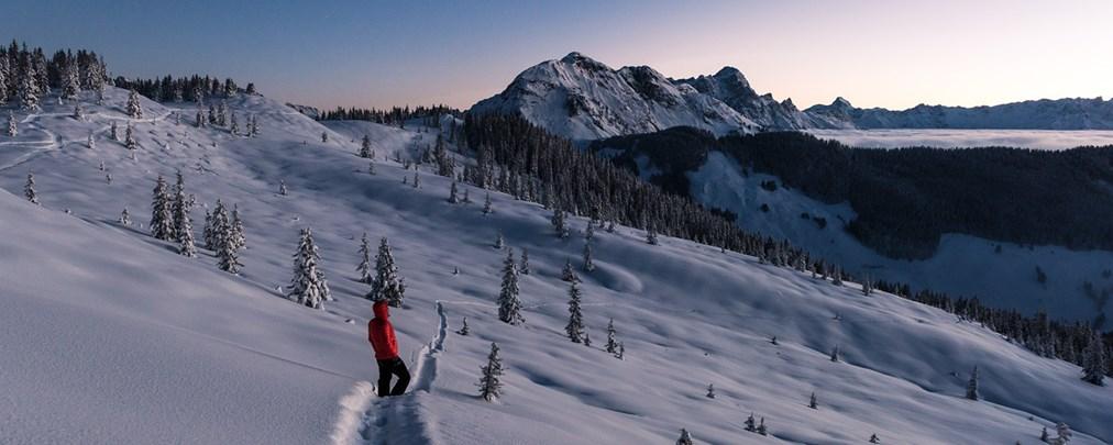 """ALPIN-Fotowettbewerb im Februar: """"Eiskalte Natur"""""""