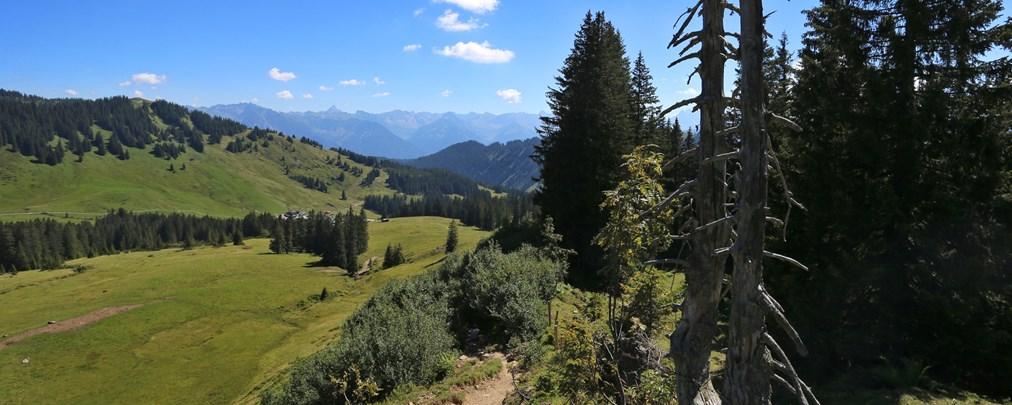 Riedberger Horn, Änderung Alpenplan, Folgen