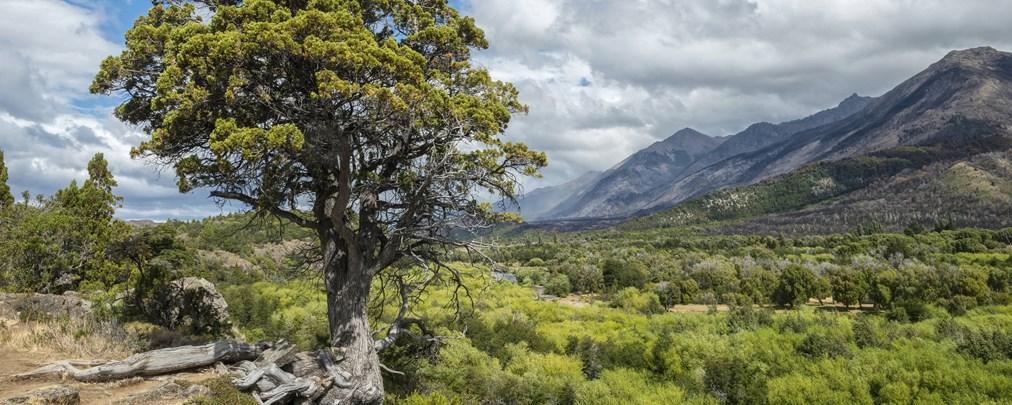 Naturparks in Patagonien
