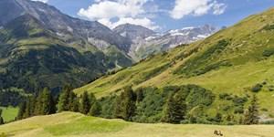 Silvretta, Großglockner, Großvenediger: GPS-Tracks im März