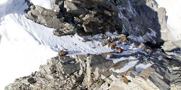 Speed-Rekord an Grandes Jorasses Nordwand