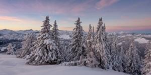 """ALPIN-PICs: Jetzt noch """"Wintermärchen"""" einreichen!"""