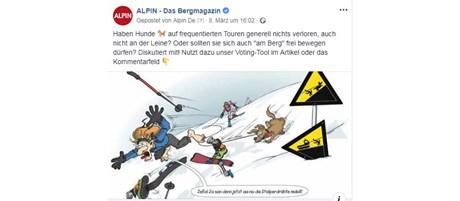 Mit Hund auf Skitour? - Die Facebook-Kommentare unserer User