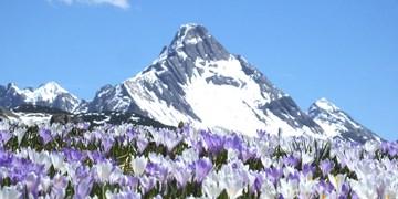 Frühling im Estergebirge