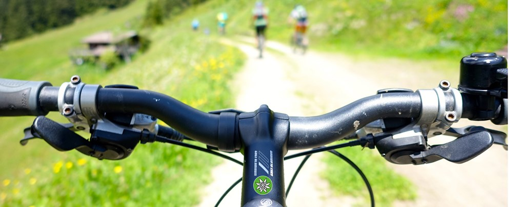 Alpenverein fordert die Öffnung von Forststraßen für Mountainbiker