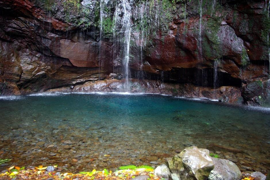 Märchenhafte Wasserwelt