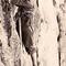 Wilder Kaiser 1951