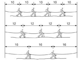 Eine Vierer- (oder Fünfer-)Seilschaft ist optimal, bei einer Dreier-Seilschaft sollten die Abstände etwas größer gewählt werden. Eine Zweier-Seilschaft muss äußerst konzentriert gehen.