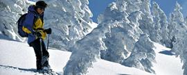 Winter in Bayern: 21 Geheimtipps am Alpenrand.