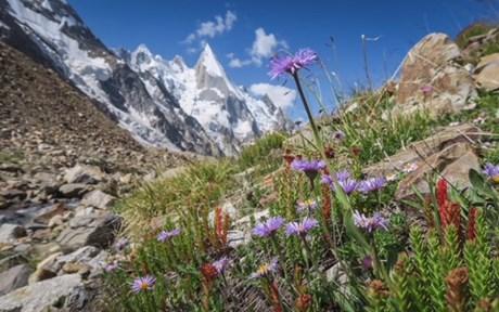 Bilder zum letzten Teil der Expedition in Pakistan.