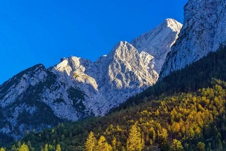 Farbenpracht – Goldener Herbst in den Bergen