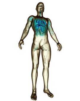 Der Organismus hat fantastische Möglichkeiten der Anpassung an unterschiedliche Bedingungen.
