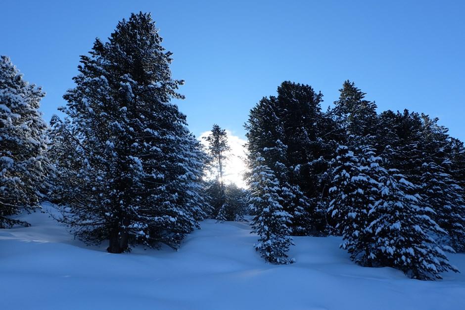 Winter so wie früher...