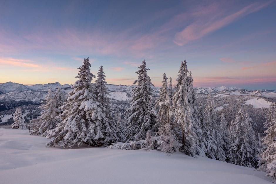 Neujahrstag Wintermärchen
