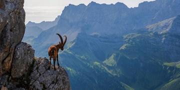 Karwendel Über Breitgrießkarspitze und Große Seekarspitze