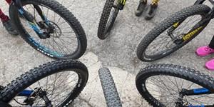 Sperrzonen für Biker in bayerischen Alpen?