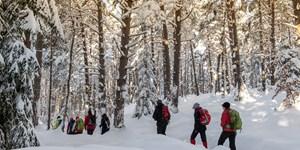 Winter-Weitwandern mit Gerlinde Kaltenbrunner