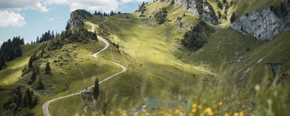 DAV-Empfehlungen: Umweltfreundliche Bergtouren