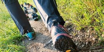 Zehn Approach-Schuhe Modelle getestet