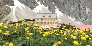 Falkenhütte wieder geöffnet