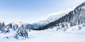 ALPIN 3/2021 - Weißes Karwendel