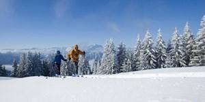 Skitour auf das Hintere Hörnle