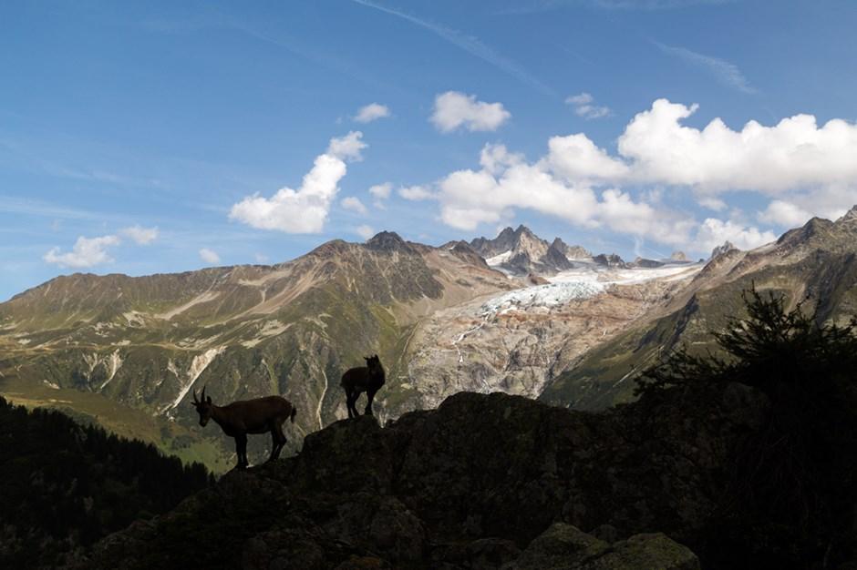 Im Schatten der Berge.
