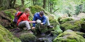 Land der Grüntöne: Wandern im Vogtland