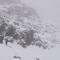 David im Nebel